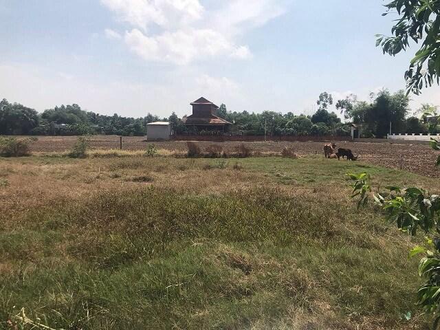 Nhiều lô đất nông nghiệp tại Long An được chủ đất san lấp tranh thủ bán ra khi thị trường sốt nóng nay phải giảm giá sâu để tìm khách.