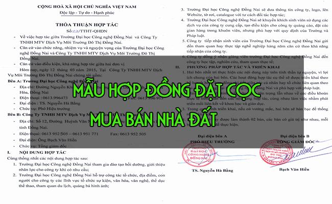 mau-hop-dong-dat-coc-mua-ban-nha-dat-2019