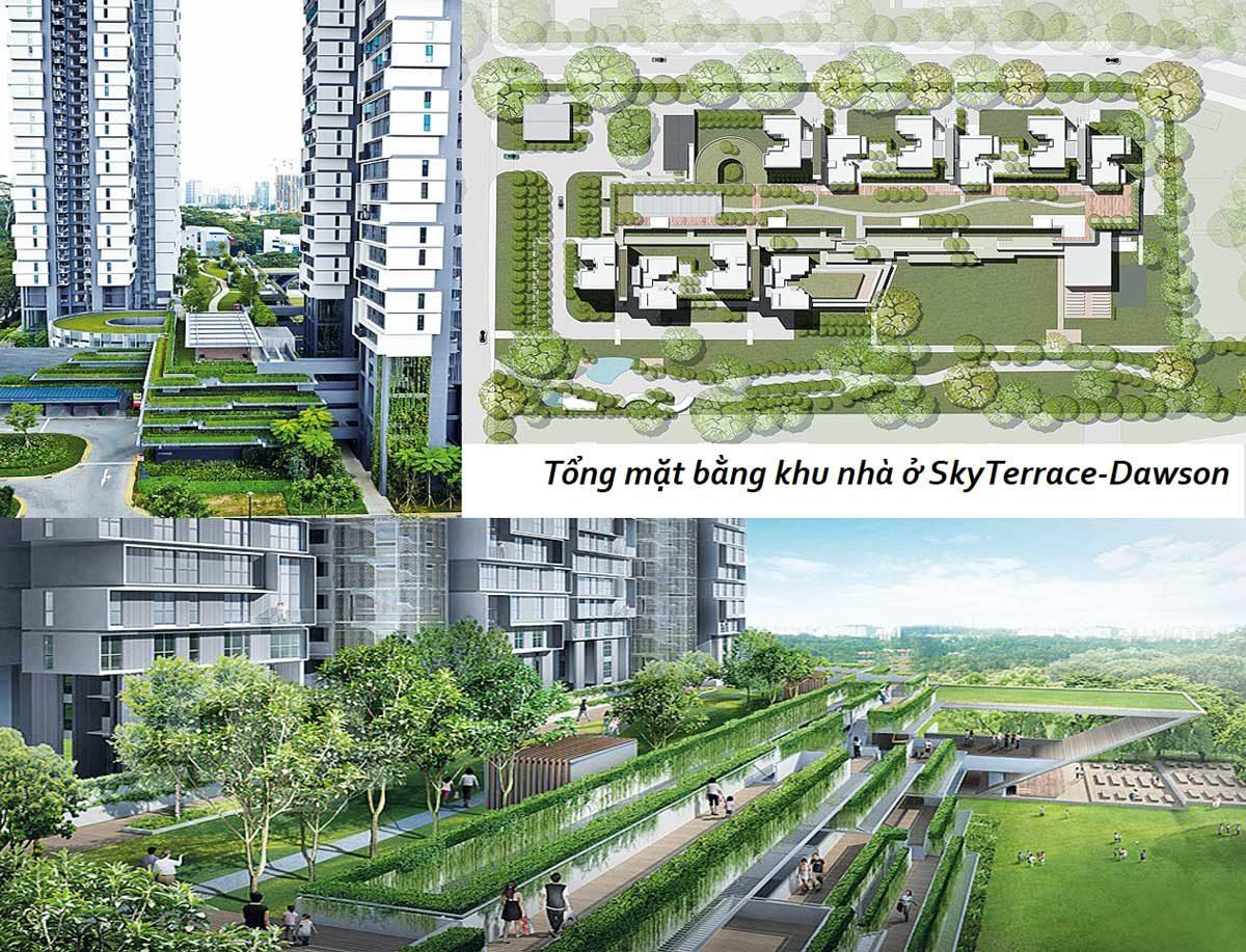 Không gian sống Xanh đẳng cấp Singapore tại Alva Plaza
