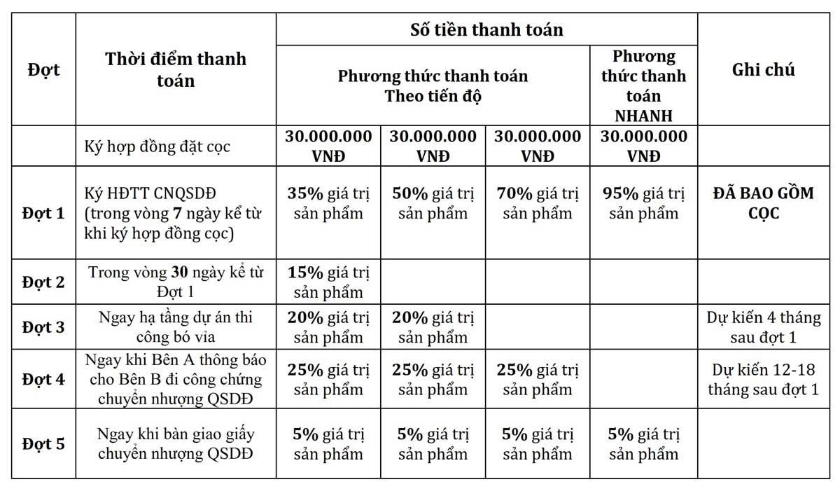 phuong-thuc-thanh-toan-du-an-khu-do-thi-sao-vang-long-an