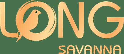 logo long savanna - DỰ ÁN ĐẤT NỀN LONG SAVANNA NHÀ BÈ