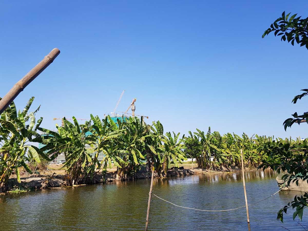 Hinh anh Thuc te Du an The Green Village Khang Dien - DỰ ÁN THE GREEN VILLAGE KHANG ĐIỀN BÌNH CHÁNH