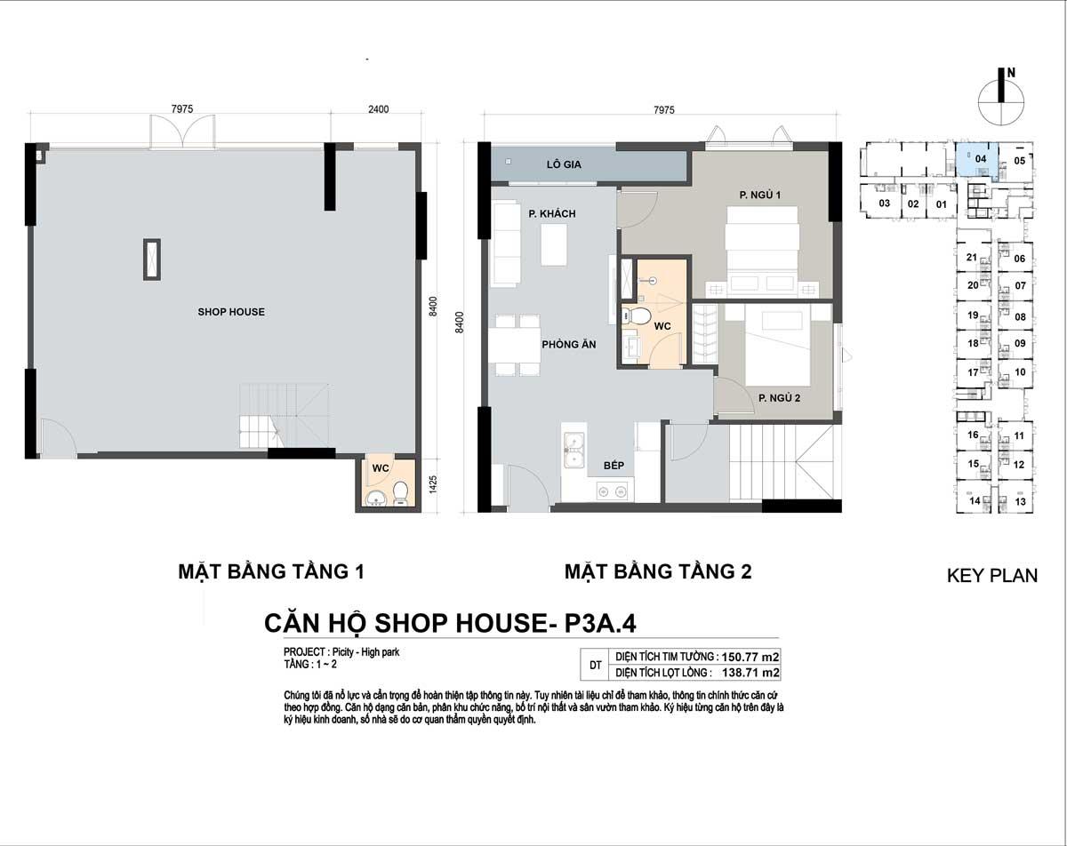 P3A 4 150m2 - Shophouse Picity High Park
