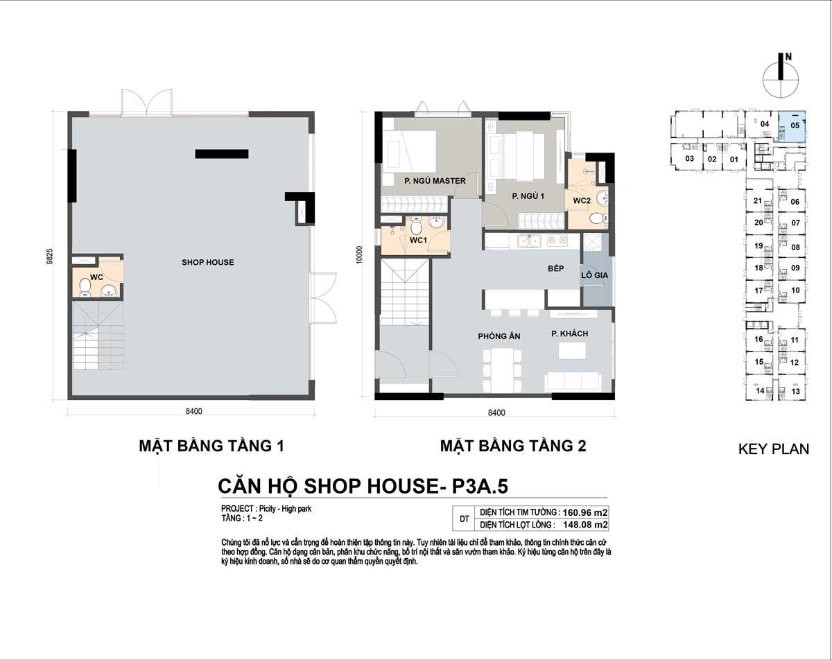 P3A 5 160m2 - Shophouse Picity High Park