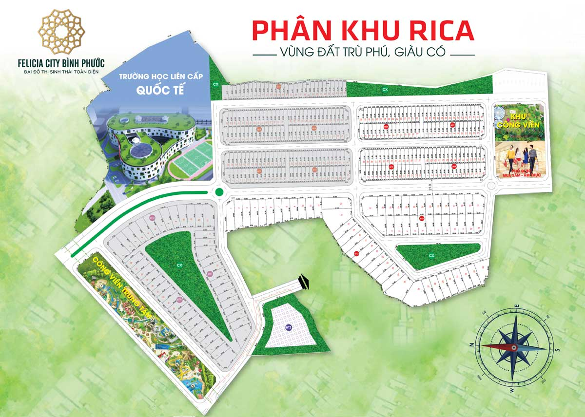 Mat bang phan khu Rica Du an Felicia City Binh Phuoc - FELICIA CITY BÌNH PHƯỚC