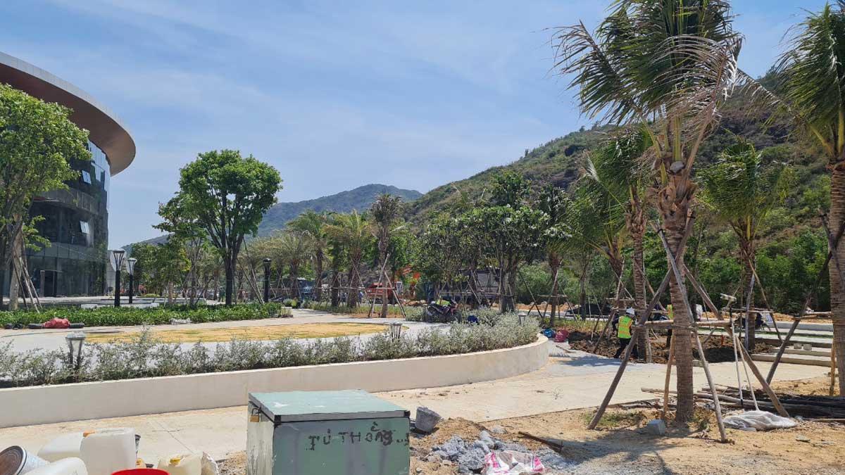 cay xanh quanh Nha mau Merry City Quy Nhon - Merry City